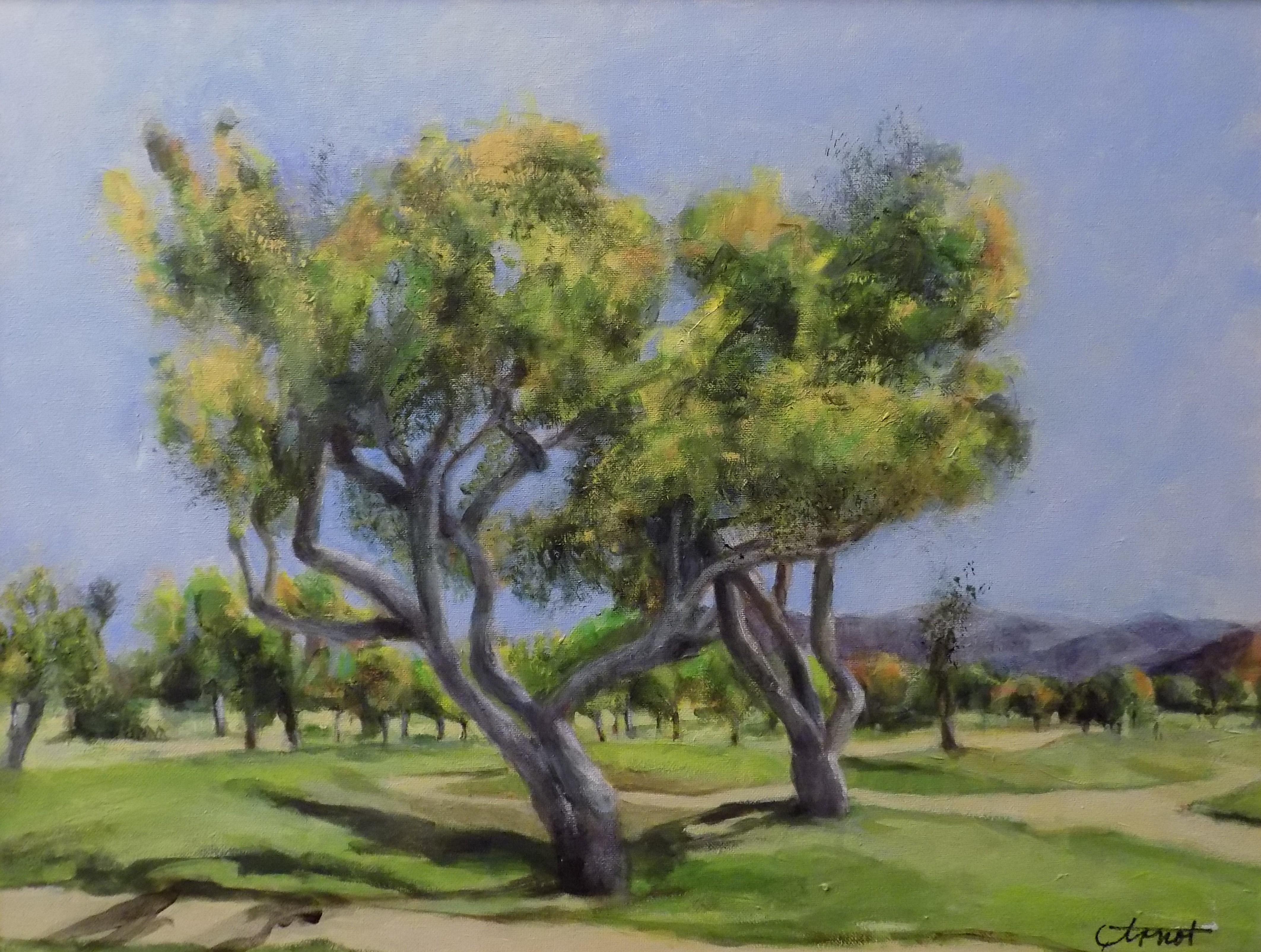 Cottonwood Golf Course - Arnot