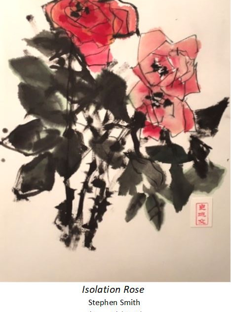 Isolation Rose - Stephen Smith