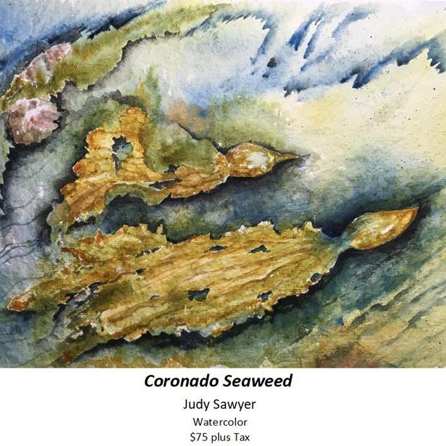 Coronado Seaweed - Judy Sawyer - Waterco