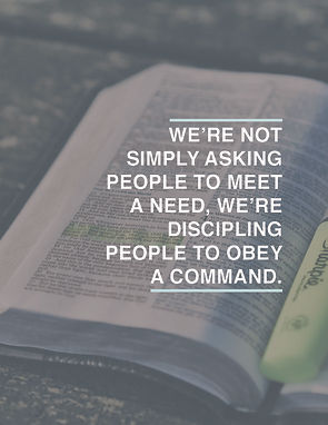obey a command.jpg