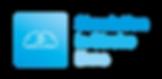 Simulation in Stroke Brno_logo