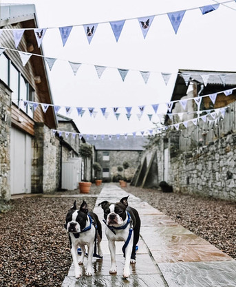 Doxford Barns walkway with bunting and Frenchies by Wishbone Weddings