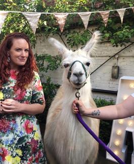 Gold sequin bunting and llama at the Lon