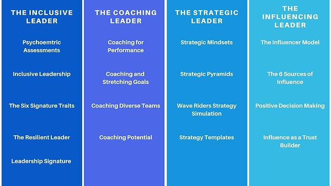 CTG Executive Leadership Programme.jpg