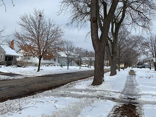 winter Elm ave.jpg