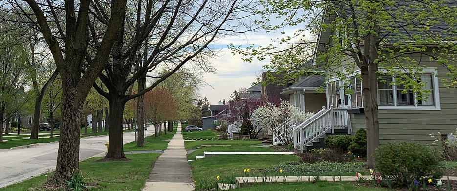 Spring Elm Ave_edited.jpg