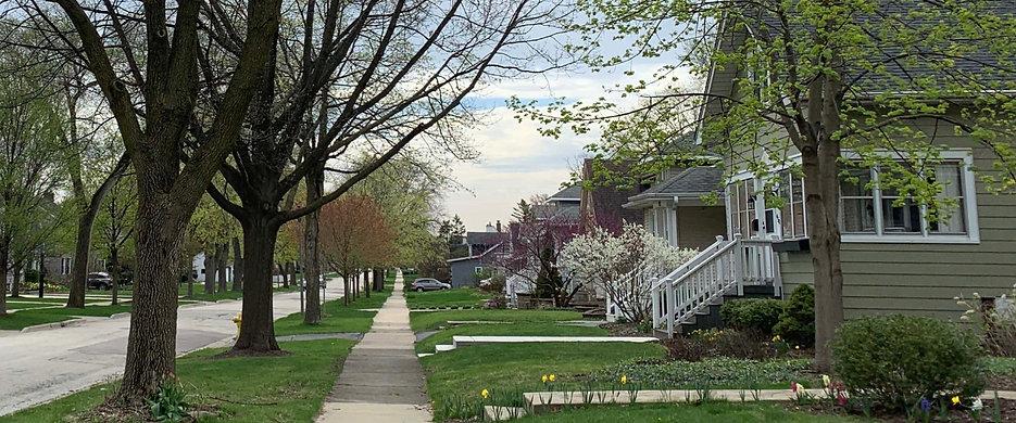 Spring Elm Ave_edited.jpg