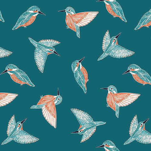 Rivelin Valley - Kingfishers