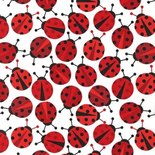 Urban Zoologie - Ladybird in Red