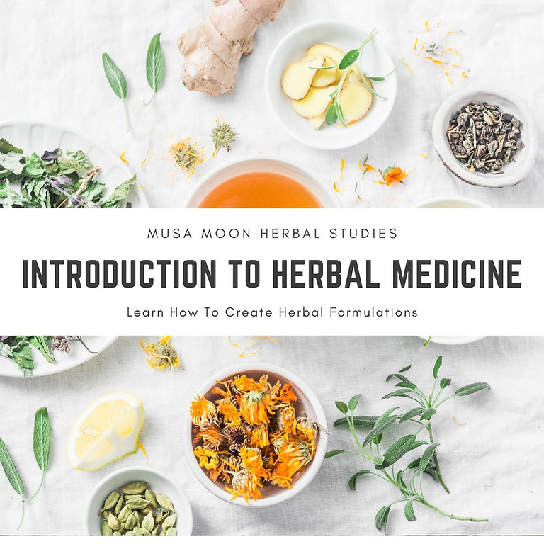 Introduction To Herbalism