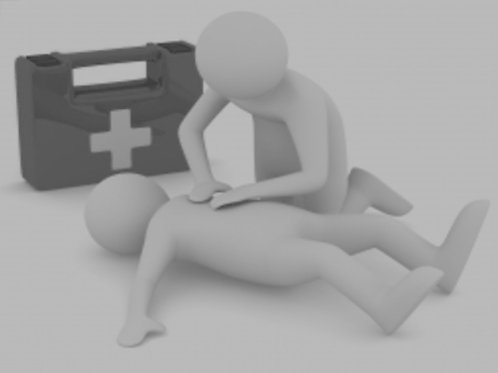 Anaphylactic Shock ONLINE Course