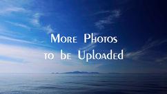 morephotostobeuploaded.jpg