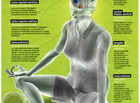 Les interactions de la méditation pleine conscience #mindfulness