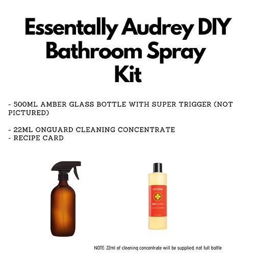 DIY Bathroom Cleaner Kit