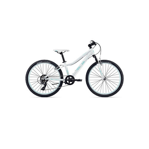 Geared / Hand Brake Bike Set-Up & Service Package