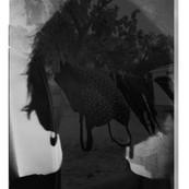 autoportrai18.jpg