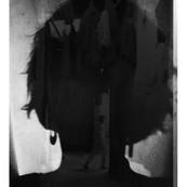 autoportrai37.jpg