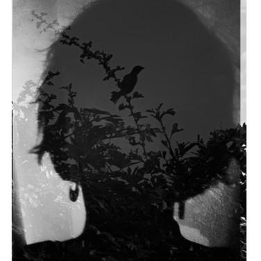 autoportrai27.jpg