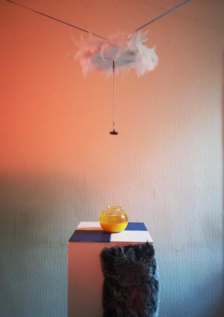Installation by Eilish Dougan