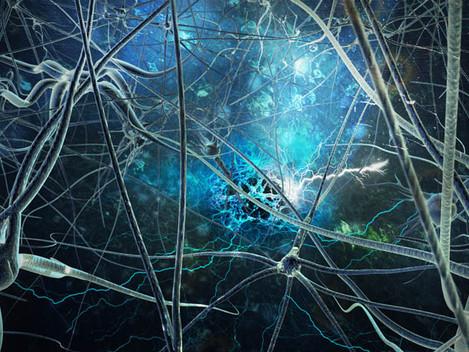 Neurocoaching, o processo de coaching turbinado pelo uso da neurociência