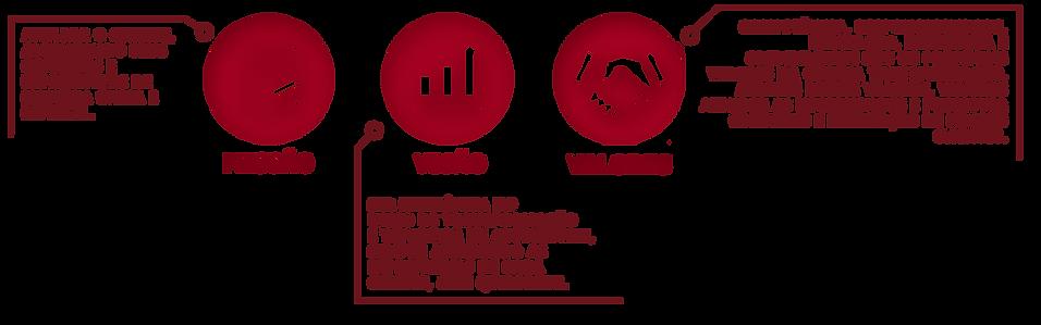missão-visao-e-valores-.png
