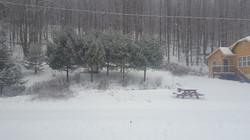 Winter at BSI