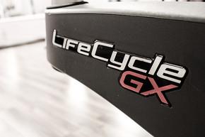 LifeCyclePic.jpg