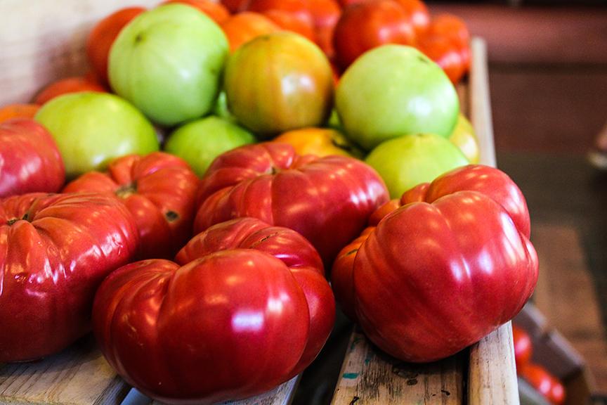 TomatoWebPic