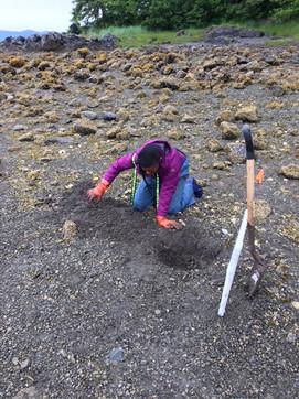 Shellfish Biomass Survey