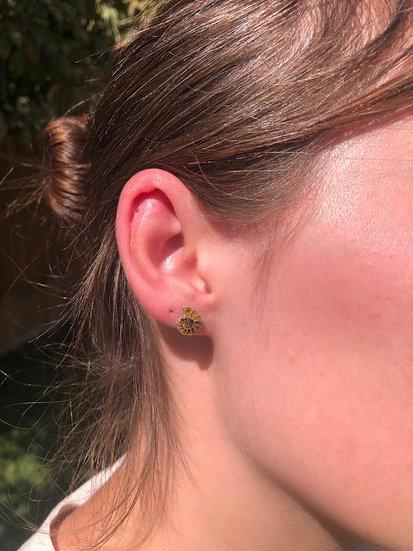 Ammonite Earrings100% Sterling Silver