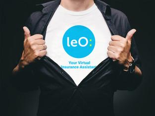 Leo Insurance Brand Design