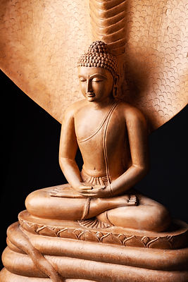 Buddha in a meditation pose, under prote