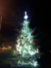 Tree again.jpg