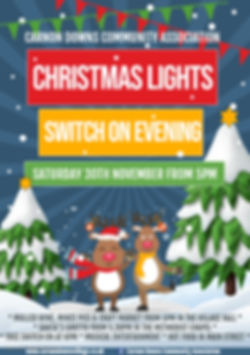 New Christmas Lights evening poster 2019