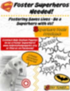 Foster Superheros.jpg