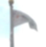 Flag+for+Gallery.png