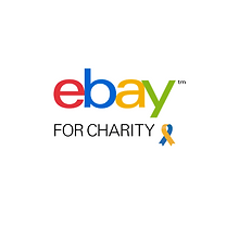 Find Brendan Sailing on eBay for Charity