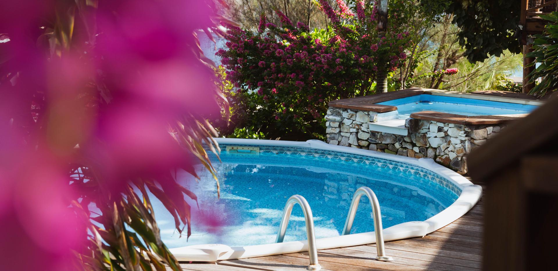 La piscine et Jacuzzi.jpg