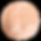 8_rosegold-circle_edited.png