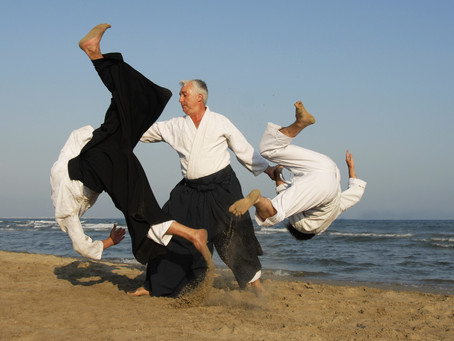 Aikido As Physical Metaphor For Negotiation
