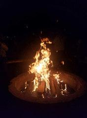 2017 Bonfire  >110 Attended