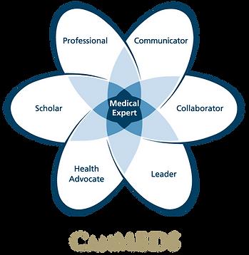 CanMEDS_Diagram_EN.png