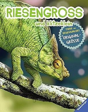 RIESENGROSS und klitzeklein: Tiere des Regenwaldes in Originalgrösse