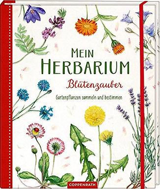 Mein Herbarium Blütenzauber: Gartenpflanzen sammeln und bestimmen