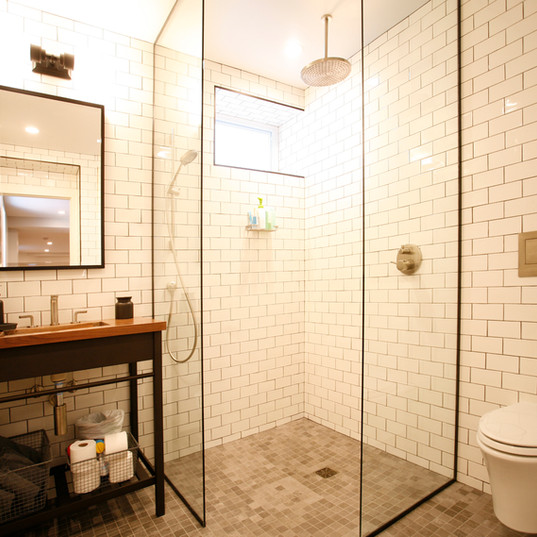 Tesh basement bathroom.jpg