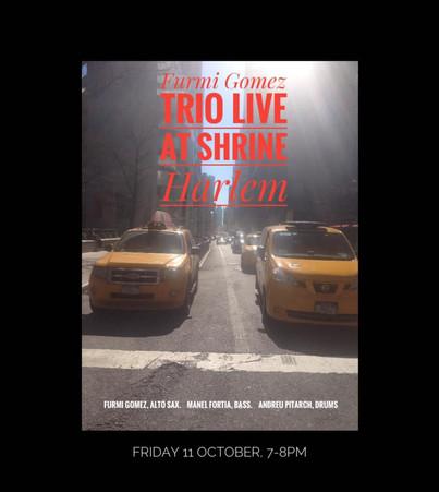 Furmi Gomez Trio, Harlem, NYC