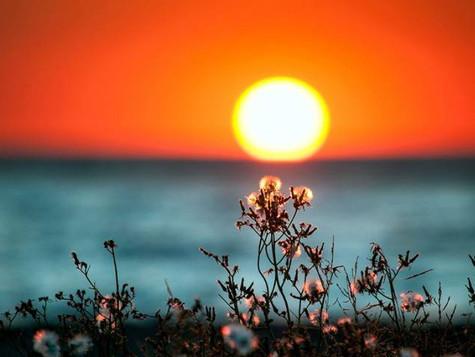 Cierra ciclos el 21 de diciembre con el Solsticio- AÑO DE LA RATA- NUMEROLOGÍA 4