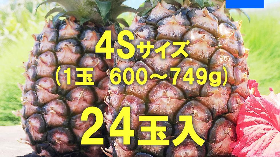 【2020年度完売御礼】西表島ピーチパイン サイズ4S /1ケース(24玉)