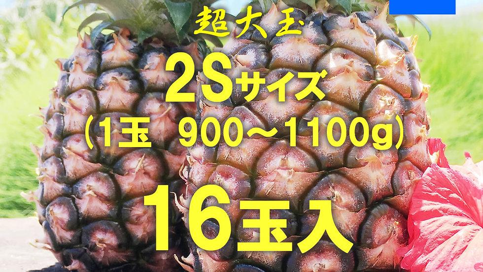 【完売御礼】【2021年度新物】西表島ピーチパイン サイズ2S /1ケース(16玉)