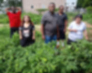 Special Needs Horticultural Therapy Prog